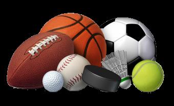 Sportovní kroužky v 1. pololetí