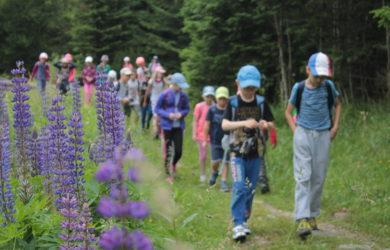 Škola v přírodě Esprit – úterý