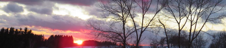 Zimní škola v přírodě – návrat
